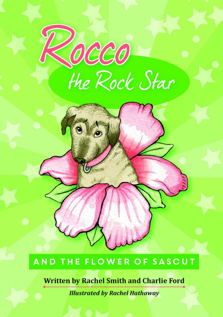 childrens book two of rocco the rock star
